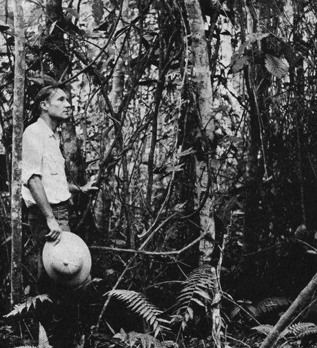 William Burroughs bajo el lente del etnobotánico Dr. Richard Schultes en Mocoa, Colombia, 1953. Burroughs sostiene una liana de ayahuasca.